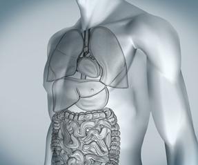 metformin in renal failure patients